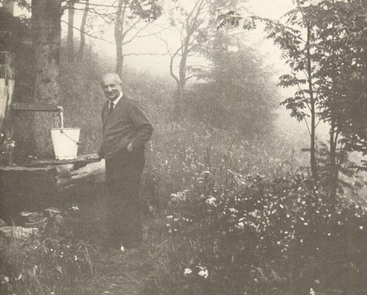Heidegger, éternel habitant de la forêt noire