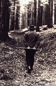 Heidegger, filant dans les bois énigmatiques